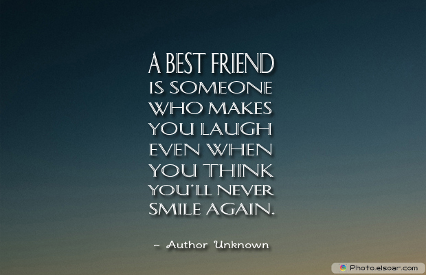 Best Friends Forever , A best friend is someone who makes you laugh even when you