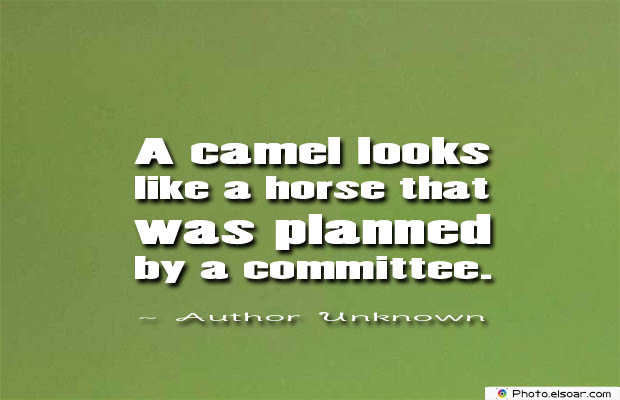 Short Strong Quotes , A camel looks like a horse
