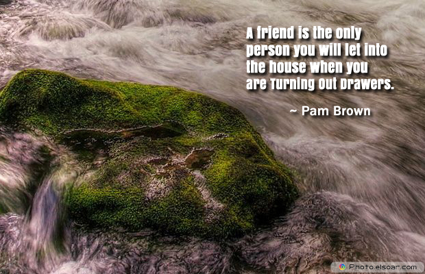 Short Quotes , A friend is the only person you will let into the house when