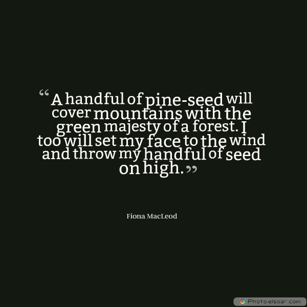 Martin Luther King Jr. Day , A handful of pine-seed will cover mountains with the green majesty