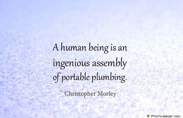 Body Quotes , Quotes About Body , A human being is an ingenious