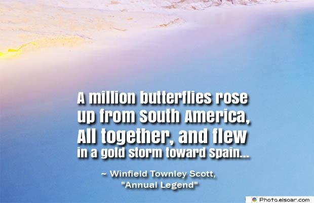 Butterflies Quotes , A million butterflies rose up from