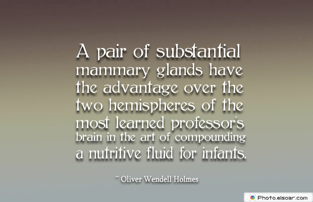 Breastfeeding Quotes , A pair of substantial mammary glands