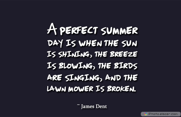 Housewarming Quotes , A perfect summer day is when the sun is shining, the breeze