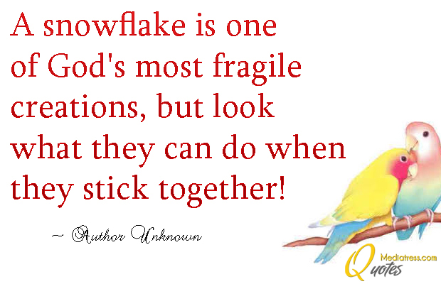Martin Luther King Jr. Day , A snowflake is one of God's most fragile creations