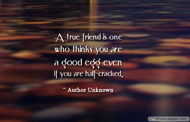 Best Friends Forever , A true friend is one who thinks you are a good egg