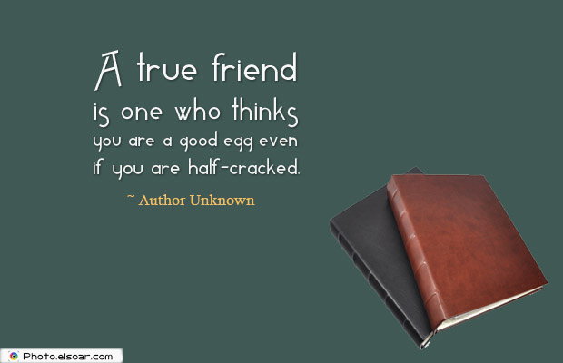 Best Friends Forever , A true friend is one who thinks you are a good