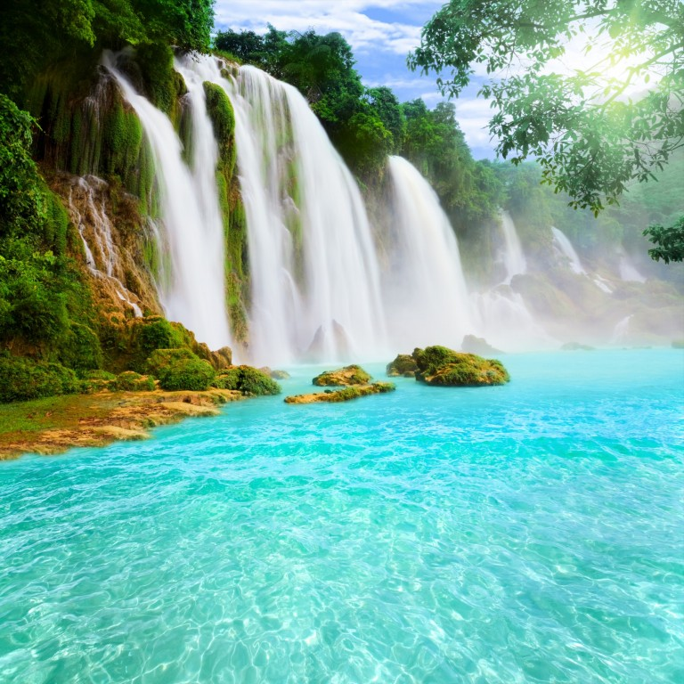 Amazing Tropical Nature HD Pictures 2