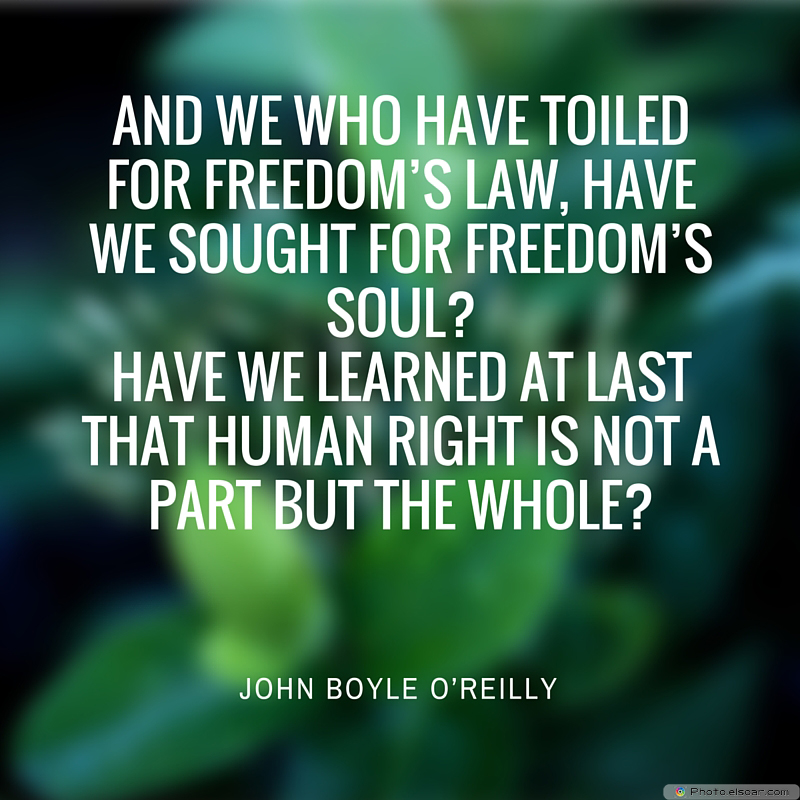 Martin Luther King Jr. Day , And we who have toiled for freedom's law, have we sought for