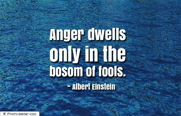 Quotes About Anger , Anger dwells only in the bosom