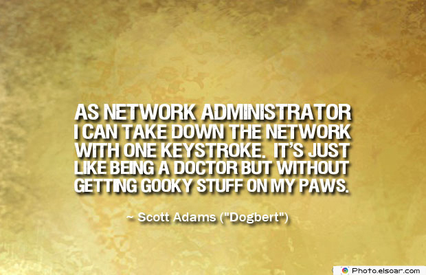 As network administrator