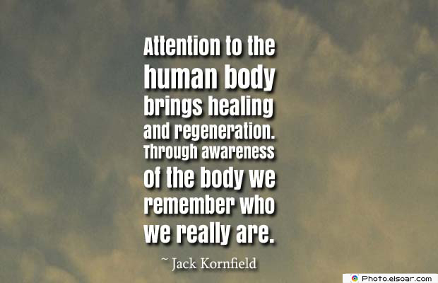 Body Quotes , Quotes About Body , Attention to the human body brings