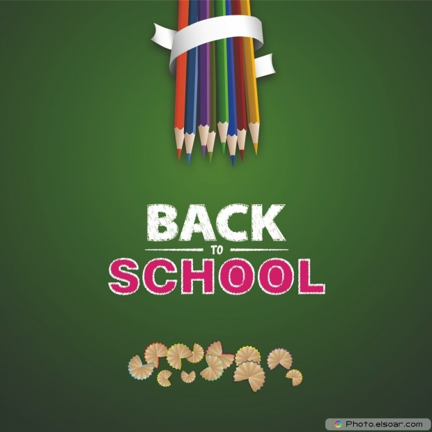Back To School With Multicolored Pencils