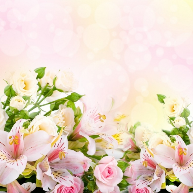 Beautiful Flowers Pictures 3