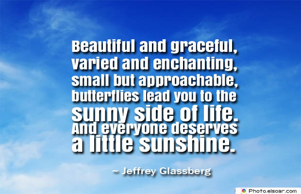 Butterflies Quotes , Beautiful and graceful