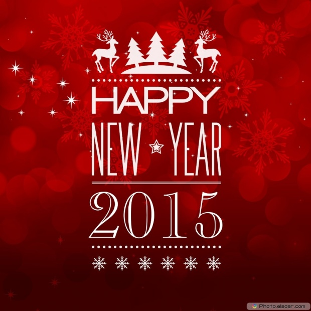 Best Wishes For A Happy New Year 2015 - Great Picture