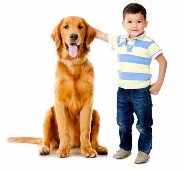 Boy with a beautiful dog