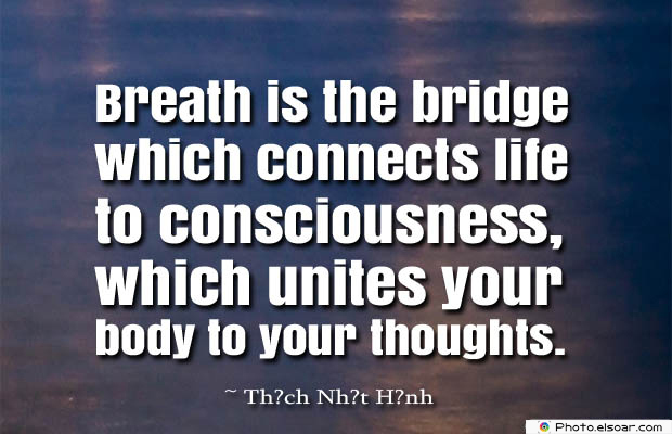Breathing Quotes , Breath is the bridge which connects