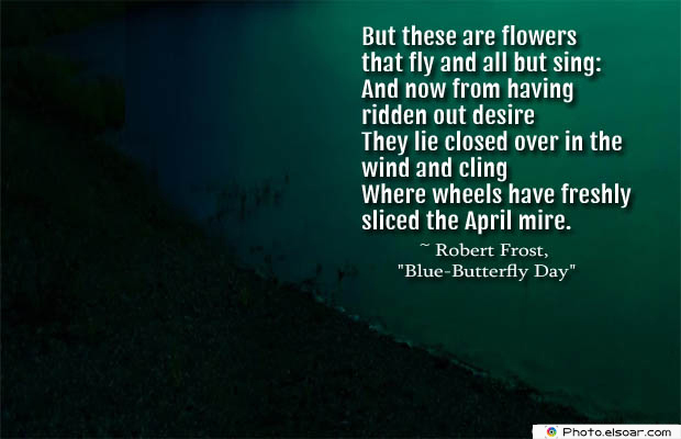 Butterflies Quotes , But these are flowers that fly and all but sing