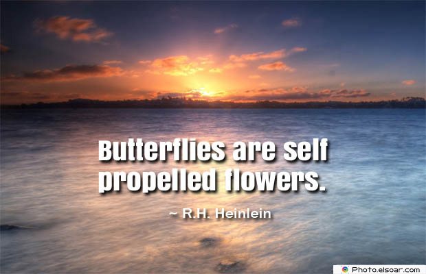 Butterflies Quotes , Butterflies are self propelled