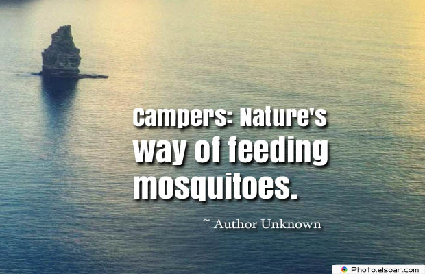 Campers Nature's way