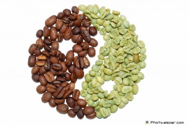 Coffe bean on white background
