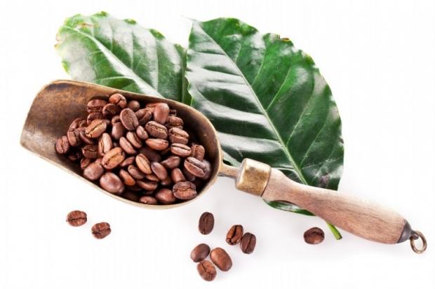Coffee Beans C