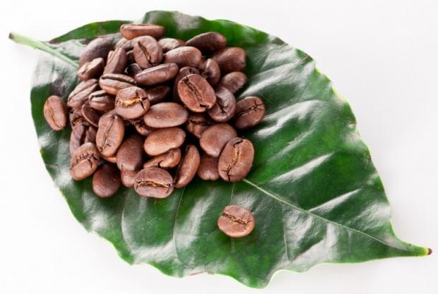 Coffee Beans D