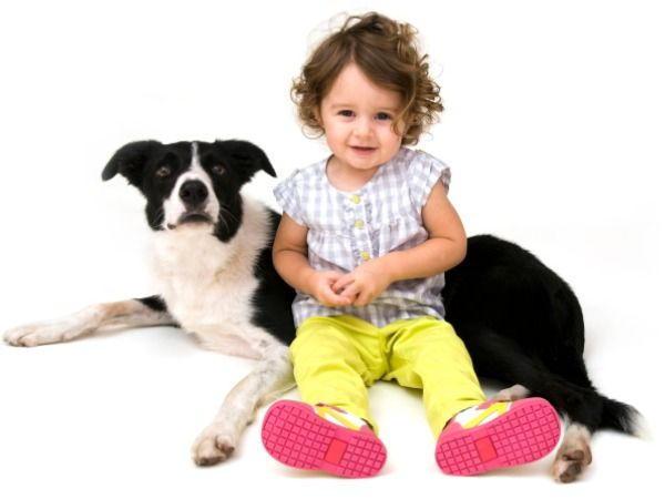 Cute Dogs Images 6