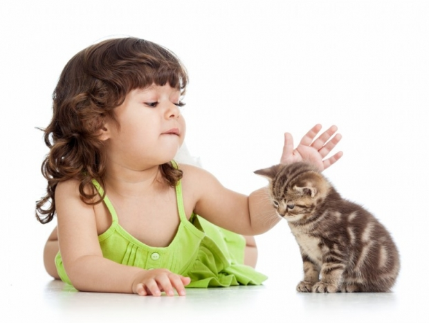 Cute happy girl playing with cat kitten