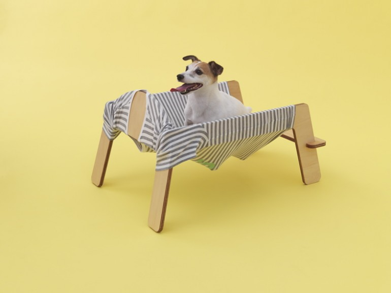 Cute Dogs for Children