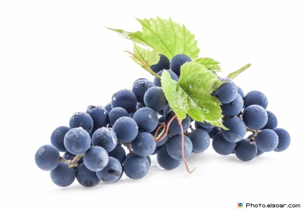 Dark Ripe Grapes With Leaves