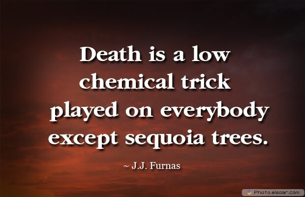 J.J. Furnas, Death Quotes, Death Sayings, Quotes Images, Quotes About Death