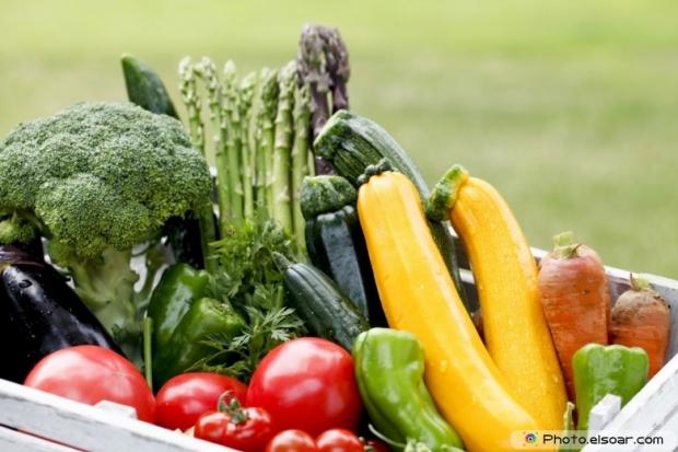 Different Fresh Vegetables On Big Basket