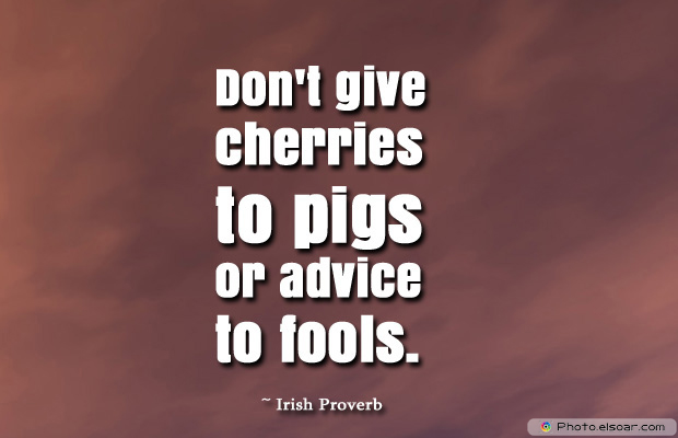 April Fool's Day , Don't give cherries to pigs
