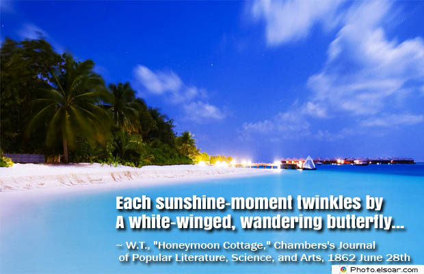 Butterflies Quotes , Each sunshine-moment twinkles by