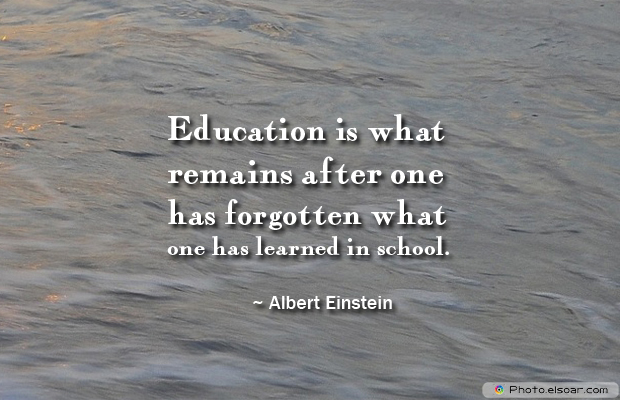 Back to School Quotes , Education is what remains after one has forgotten