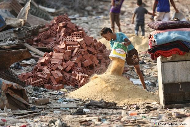 Egyptian Child Works Hard