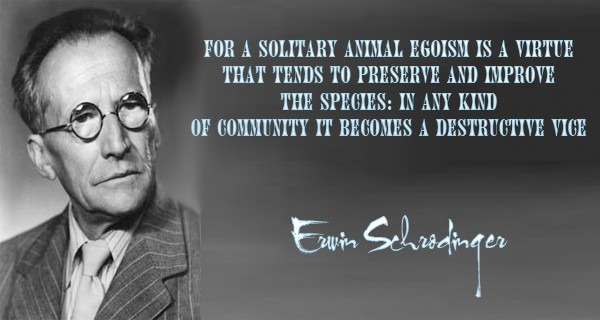 Erwin Schrodinger Quotes, Sayings Images 2