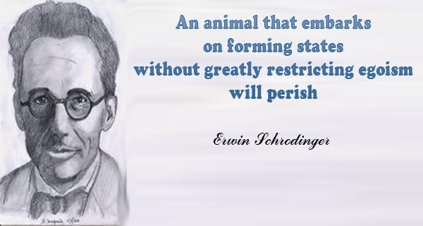 Erwin Schrodinger Quotes, Sayings Images 3