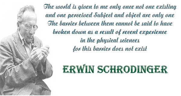 Erwin Schrodinger Quotes, Sayings Images 5