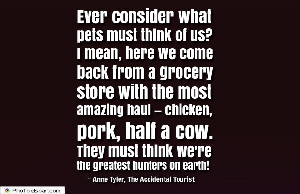 Ever consider what pets must think