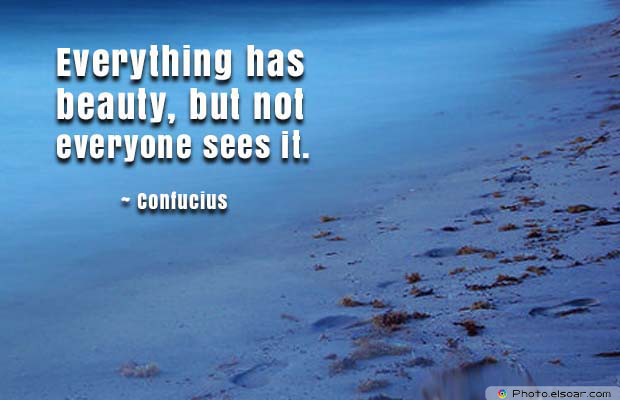 Beauty Quotes , Everything has beauty