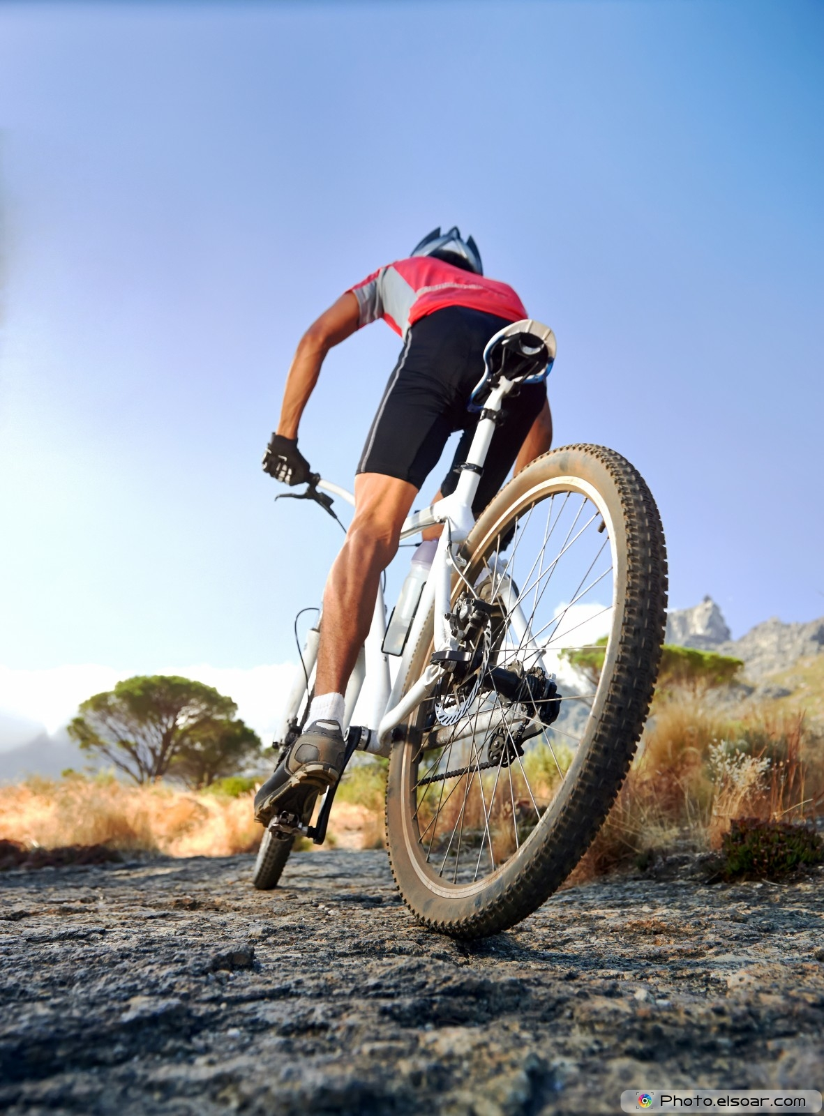 Down Hill Bike Stock Photos, Royalty-Free Images & Vectors ...