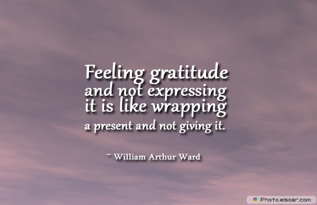 Admin Asst Day , Feeling gratitude and not expressing it is