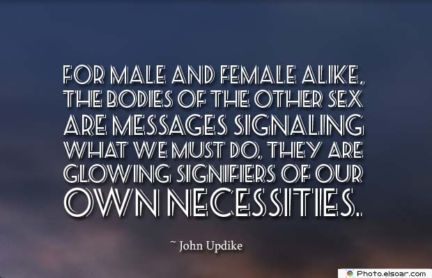 Body Quotes , Quotes About Body , For male and female alike