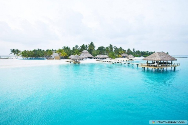 Forever Love In The Maldives