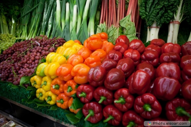 Fresh Organic Market