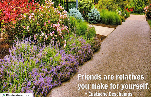 Best Friends Forever , Friends are relatives you make