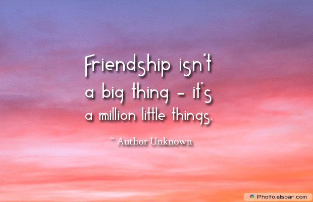 Best Friends Forever , Friendship